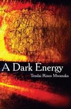 A Dark Energy