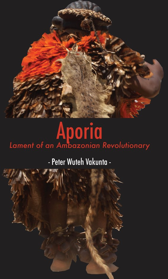 Aporia: Lament of an Ambazonian Revolutionary