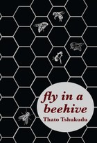 fly in a beehive