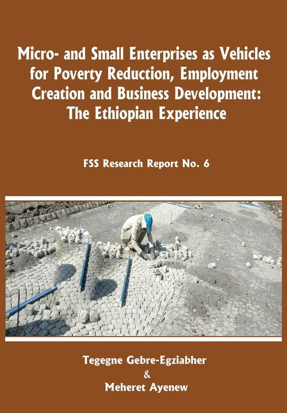 Micro-and Small Enterprises as Vehicles for Poverty Reduction, Employment Creation and Business Development