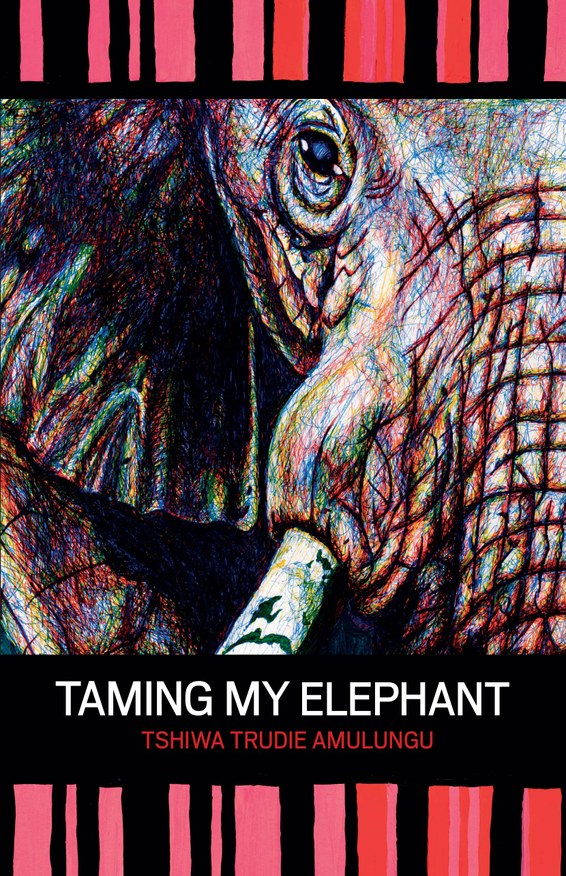 Taming My Elephant